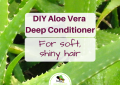 DIY Aloe Vera Deep Conditioner Hair Treatment