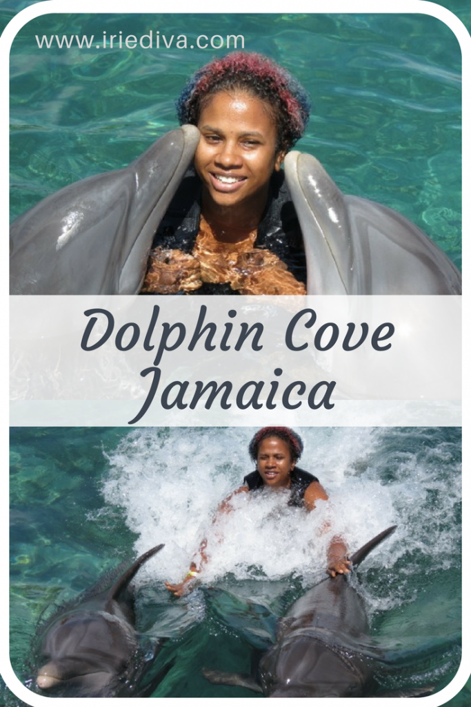 Adventure at Dolphin Cove Jamaica