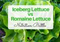 Iceberg Lettuce vs Romaine Lettuce