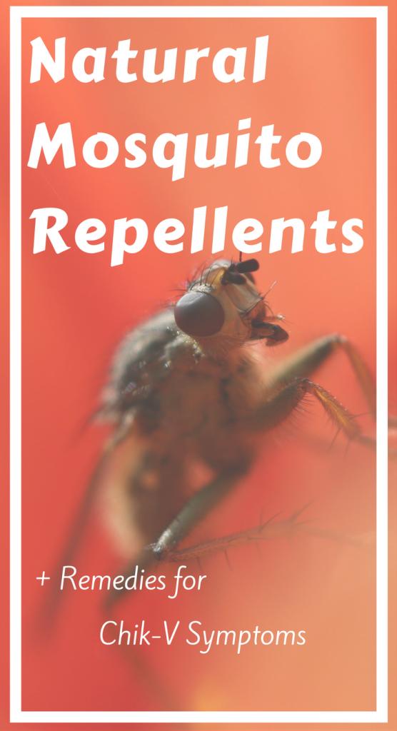 Natural Mosquito Repellents