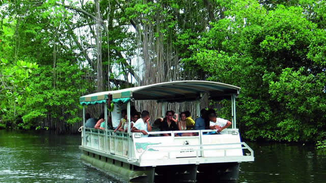 jamaica-get-away-tours-black-river-safari-3