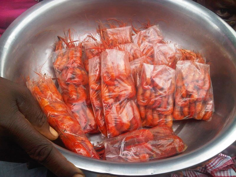 Middle Quarters Shrimp in St. Elizabeth Jamaica