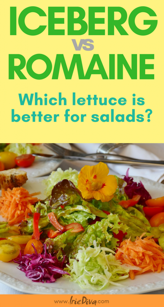 Which salad green is best for your green salad recipes? See the breakdown of salad greens here and choose which one will give you the best nutritional benefits! Vegans will want to know especially.