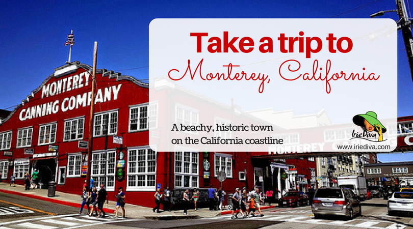 Fall in Love With Monterey, California