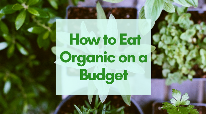 10 Ways to Live and Eat Organic on a Budget + How to Grow Herbs