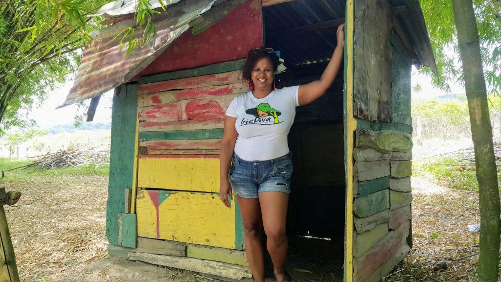 Holland Bamboo Avenue Jamaica