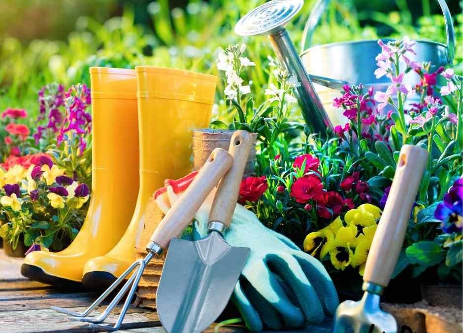 13 Must-Have Tools Used for Gardening Every Beginner Needs
